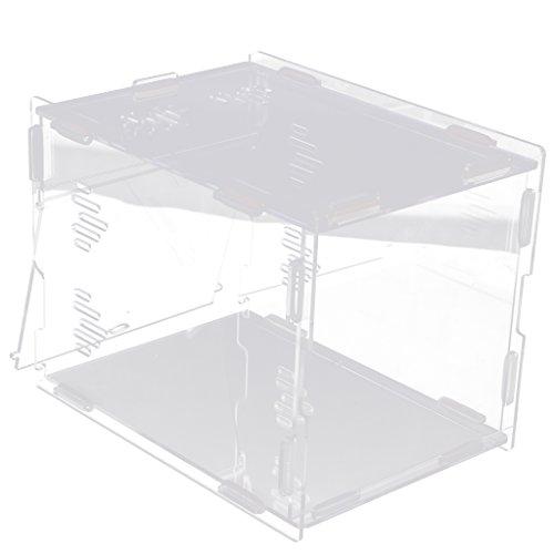 Fenteer Acryl Amphibien Insekten Reptilien Aufzuchtbox Transportkoffer Feeder 21,8x12x11cm -