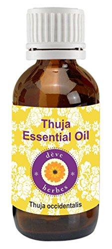 Pure Thuja Essential Oil 10ml (Thuja occidentalis) 100% Natural Therapeutic Grade