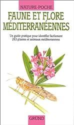Faune et flore méditerranéennes