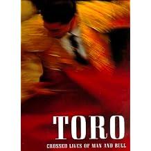 Toro: Bullfighting