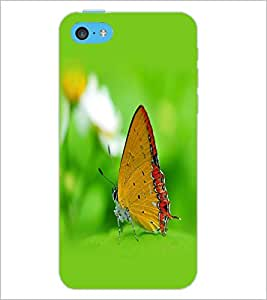 PrintDhaba Butterfly D-1259 Back Case Cover for APPLE IPHONE 5C (Multi-Coloured)