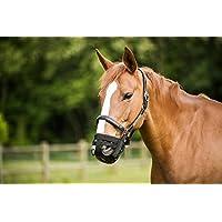 Maulkorb für Pferde