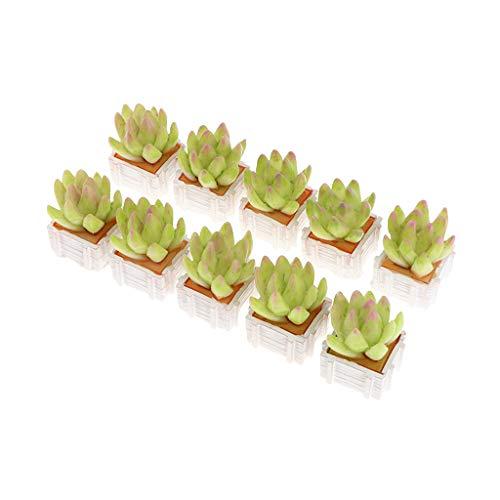 Kunstpflanze Kunstpflanze »Bonsai«,