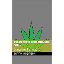 Why And How To Prune Marijuana Plants: Growing Cannabis (English Edition)