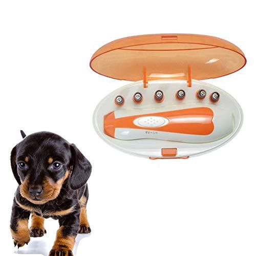 Mishap Elektrischer Nagellack für Haustiere, Sechs in Einem, mit sanfter Beleuchtung, nachts klarer