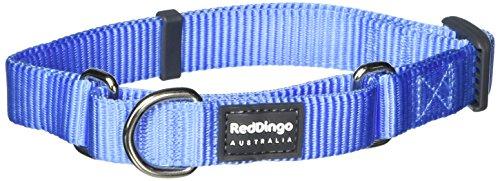 red-dingo-martingale-classic-20mm-choke-collar-mid-blue-small-medium