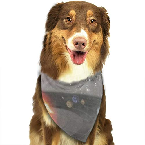 Huyotop Pet Sciarpa It's A Musical Universe Pet Dog Cat Puppy Bandana Bavaglino Testa Sciarpa Accessori