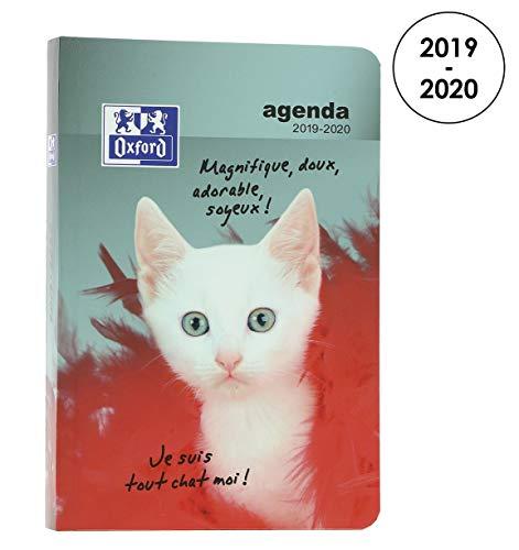 Oxford Funny Pets - Agenda escolar diaria 2019-2020, 1 día, 352 páginas, 12 x 18 cm, diseño de gato blanco