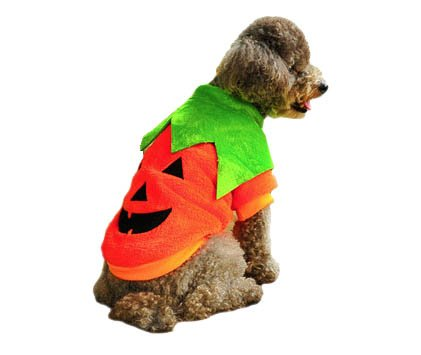 Animally® Hunde Kürbis Kostüm - Pumpkin Halloween -