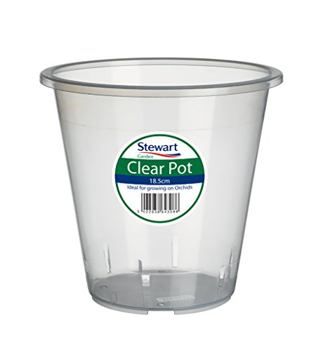 pot-a-orchidee-transparent-13-cm-par-stewart-garden-products