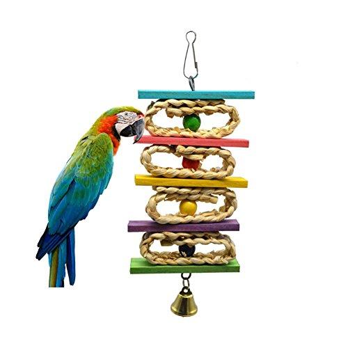 ROKOO Hoja de maíz Colgante de Acero de Madera Juguetes Loros Ardilla de pájaro Funny Chain Toy Bird Bites Subir Masticar Juguetes