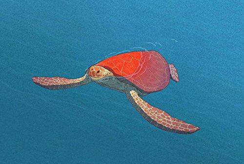 Risultati immagini per tortue rouge foto