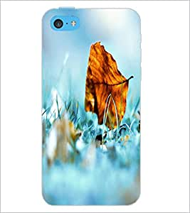 PrintDhaba Leaf D-2401 Back Case Cover for APPLE IPHONE 5C (Multi-Coloured)