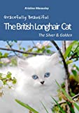 The British Longhair Cat: Silver & Golden Coat Colour (English Edition)