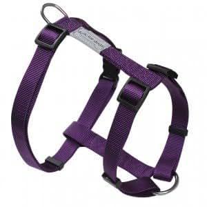 Harnais pour chien réglable Basic Line Violet Poitrail 63/97 cm x larg.2,5 cm