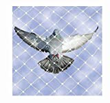 #4: Anti Bird Net 6 Foot X 8 Foot / 6 X 10/10 X 10/10 X 12/10 X 15 for Balcony Garden Windows with in Built Nylone Ropes to Easy Tying with 30 Pcs Plastic Cable Clips (White)