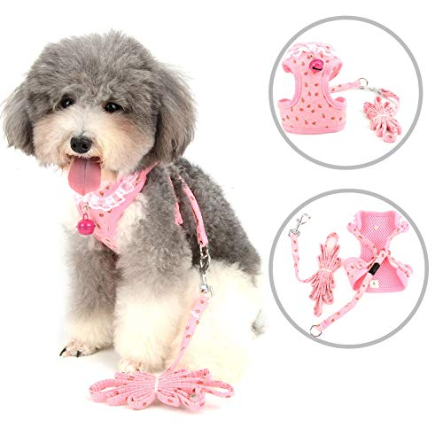 Ranphy Hundegeschirr und Leine, ausbruchsicher, Katzengeschirr mit Glöckchen, atmungsaktives Halsband aus Spitze, gepolsterte Weste, verstellbar, weiches Hundehalsband -