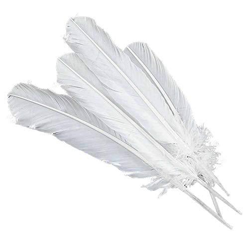 Pigeon Fleet 50 Stück DIY große weiße künstliche Truthahnfedern für Kunst und Handwerk, 9-12 Zoll