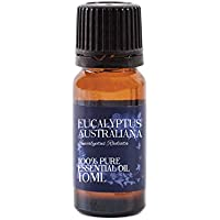 Mystic Moments Eukalyptus Australiana Ätherisches Öl - 10ml - 100% Reines preisvergleich bei billige-tabletten.eu