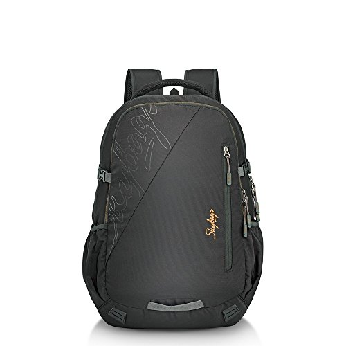 Skybags teckie 02 laptop backpack Black
