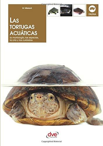 Las tortugas acuáticas por Massimo Millefanti