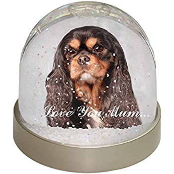 Cavalier King Charles /'Love You Mum/' Photo Snow Globe Waterball S AD-SKC10lymGL