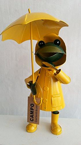 Frosch im Regendress groß