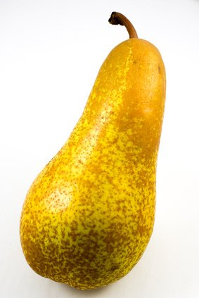 Fruchtknall Birne Abate Fetel 1 kg
