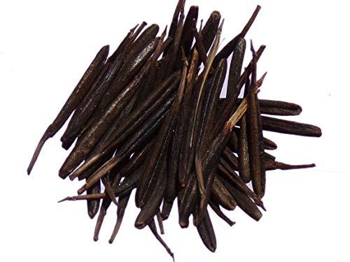 Cerfeuil Commun - 0,5 grammes - Anthriscus Cerefolium L. Hoffm. - Chervil - SEM02
