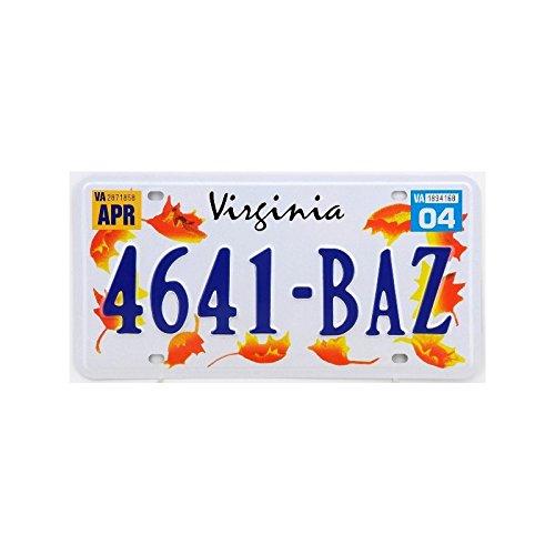 Plaque américaine USA licence plate VIRGINIA