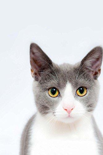 Feline Notebook por Wild Pages Press