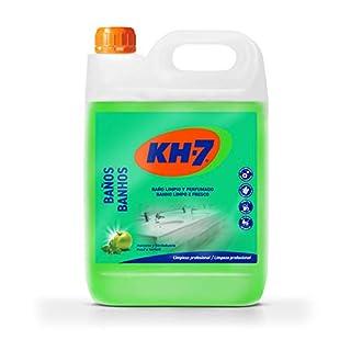 kh-nettoyant Profi für toilettes-5L
