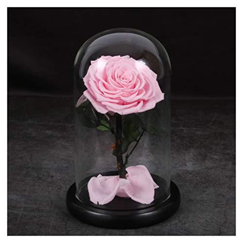 Anniversario Di Matrimonio Vacanza.Alyr Rose Incantate Kit Rose Rosse Fiore Conservato Fatto A Mano