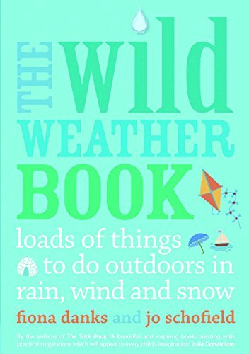 The Wild Weather Book: Loads of things to do outdoors in rain, wind and snow by Fiona Danks (2013-03-01)