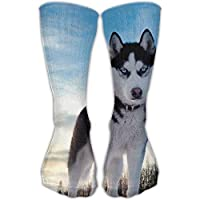 zengjiansm Hohe Socken GoKJ Men's Women's Husky Dog Look Soft Fabric Fashion Sport Long Athletic Socks Running preisvergleich bei billige-tabletten.eu