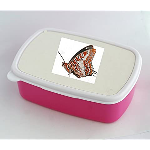 Lunch box with A color illustration of a Charaxes brutus butterfly showing the colorful underside of the wings.