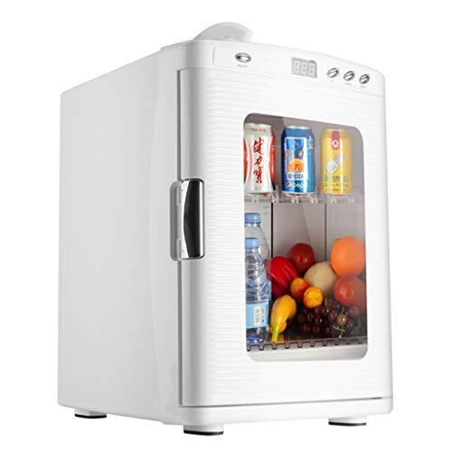 Mysida Car Refrigerators Auto Kühlschrank 25L Heizung & Kühlbox Mit Sichttüren & Fenster Und Digital Thermostat Mini Kühlschrank Für Trips Homes (12 V / 220 V)