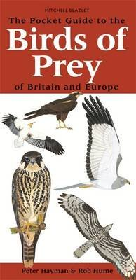 [(The Pocket Guide to the Birds of Prey of Britain and Europe)] [By (author) Peter Hayman ] published on (April, 2006)