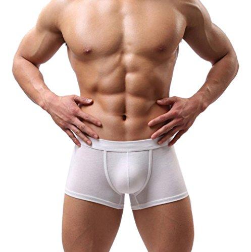 Boxershorts für Herren, Sansee Neue Männer Boxer Shorts Bulge Beutel Weiche Unterhose (XL, #St01 Weiß) (Womens Shorts Weiche)