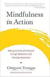 Mindfulness in Action: Making Friends with Yourself Through Meditation and Everyday Awareness by Chogyam Trungpa (2016-06-21)