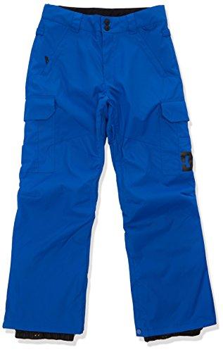 DC Shoes Herren Pants Snow Banshee, klein, blau
