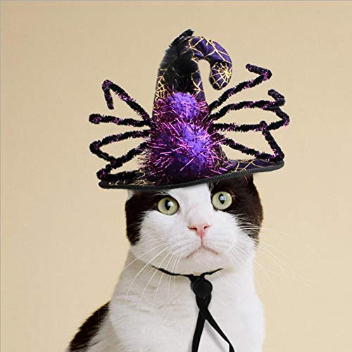 CJN Halloween Funny Spider Hat Haustier Hund Katze Fancy Rolle Spielen Mütze Kostüm Urlaub Kostüm Für Kinder, Rave, Geburtstag, Hochzeit, Weihnachten, Halloween, Kinder Party Dekoration