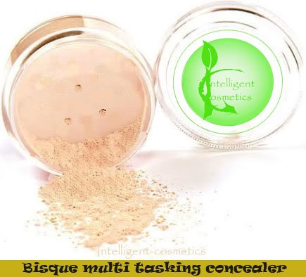3 grams Large Intelligent Cosmetics BISQUE Concealer Multi Tasking Concealer Natural Pure Minerals Cover Acne Rosacea Blemishes by Intelligent Cosmetics