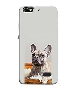 FUSON Designer Back Case Cover for Huawei Honor 4C :: Huawei G Play Mini (Animal Cat Cute Domestic Preety)