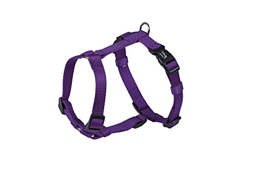 pet-product-nobby-classic-harness-purple-10mm-x-20-35cm