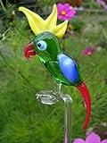 Orchideenstab Papagei Grün Gelb Rot - Blumenstab aus Glas Mit Vogel Figur - Rankhilfe Gartendekoration Blumen u-1