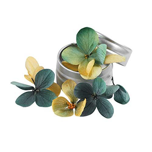 Getrocknete Blumen Aufkleber Set, Echt Trockenen Blüten UV Gel Nail Art Polnischen Tipps Dekoration, DIY Maniküre Werkzeuge ()