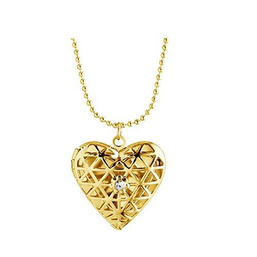 Bishiling Edelstahl Foto Medaillon zum Öffnen Kette Damen Hohl Herz Weiß Zirkonia Anhänger Halskette Gold mit Foto Medaillon (Weiß-gold-name Halskette)