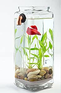Noclean aquariums gravityflow self cleaning glass betta for Betta fish tanks amazon