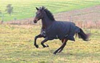 Kerbl Pferdedecke RugBe 200 Winterdecke 125 cm schwarz, 326127